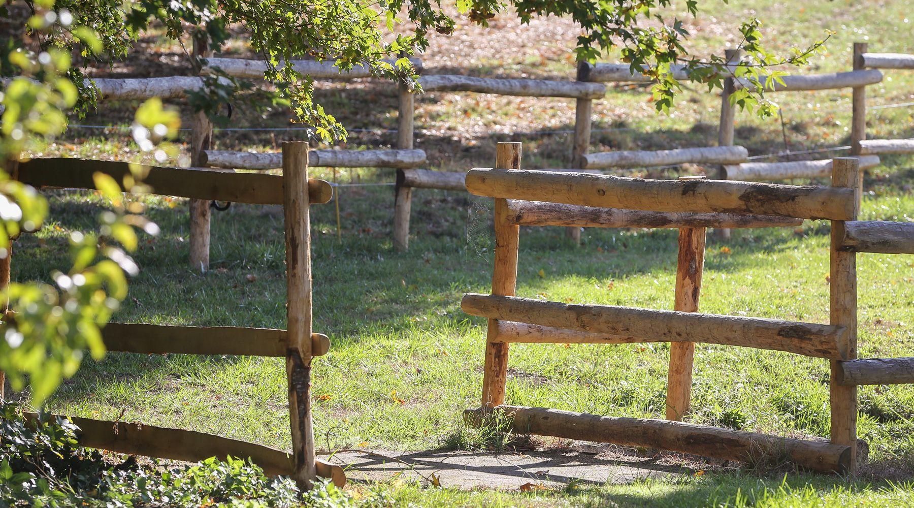 Piquets bois charente le sp cialiste des piquets bois et du treillage bois en charente for Specialiste cloture
